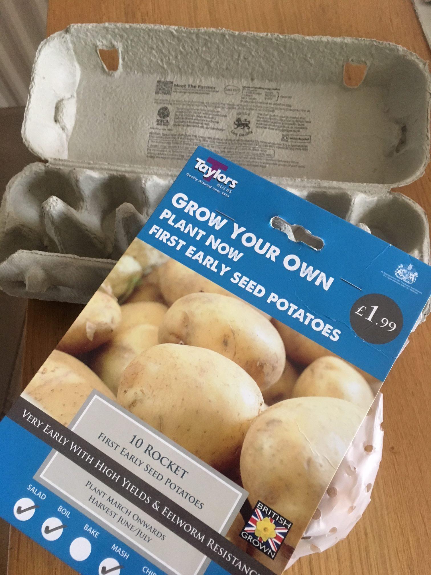 growing potatoes